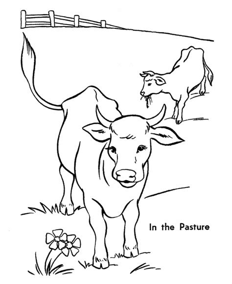 cow coloring page free printable cow coloring pages for