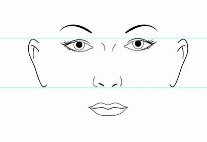 Face Human Template Illustrator Vector Step Clipart