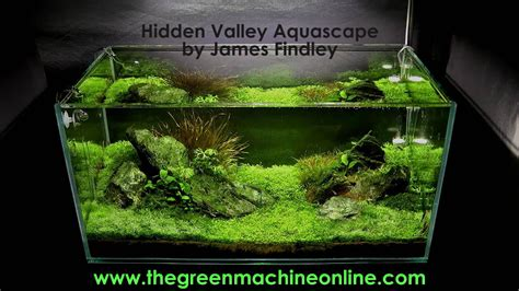 hidden valley aquascape   green machine youtube