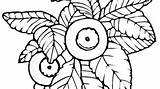 Blueberry Drawing Clipartmag Bush sketch template