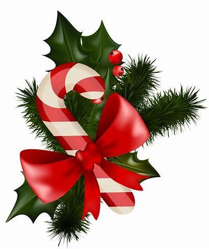 Candy Christmas Clip Transparent Cane Mistletoe Designs