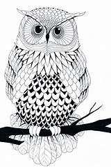 Owl Coloring Pages Simple Tattoo Stencil Printable Adult Adults Colouring Line Sheets Gel Colorful Looking Books sketch template