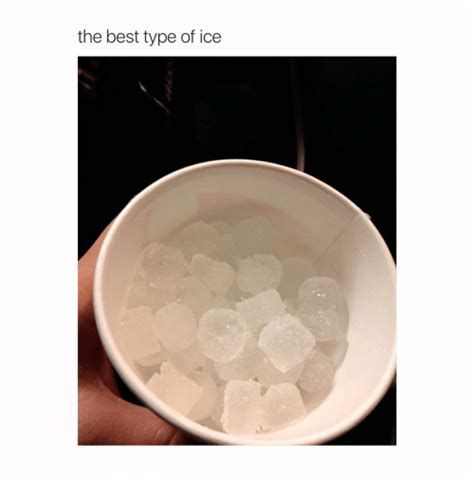 The Best Type Of Ice  Best Meme On Sizzle. Free Dining Room Table. Design The Living Room. Craft Room Lighting Ideas. Interior Dining Room Design. West Elm Room Divider. Dining Room Centerpieces. Design For Living Room Ideas. Interior Design Ideas For Living Rooms With Fireplace