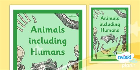 science animals including humans year 3 unit book cover