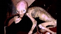 ALIEN EVIDENCE DISCOVERED IN 2014!?! REAL ALIEN PROOF ...