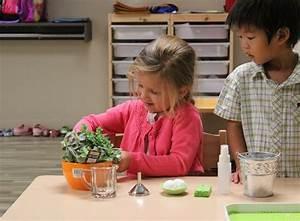 The Dual Purpose of Montessori Preschool Practical Life ...