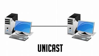 Unicast Multicast Broadcast Difference Between Network Computer