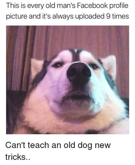 New Dog Meme - this is every old man s facebook profile picture and it s always uploaded 9 times can t teach an