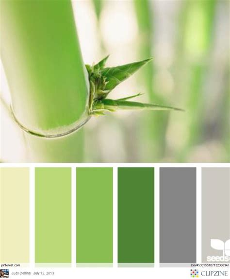 green color schemes color palette green and grey for the home green