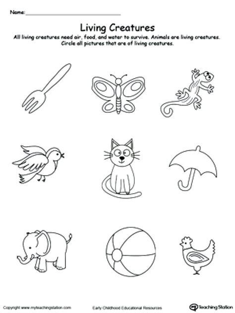 kindergarten kindergarten learning careers worksheet