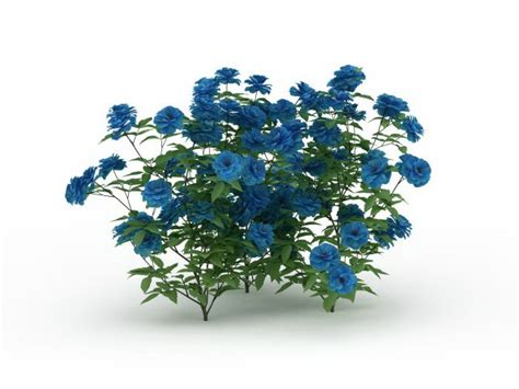 blue flower shrub plants  model ds max files