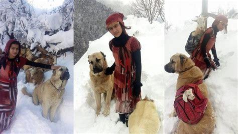 year  goatherder girl   dog rescue goat