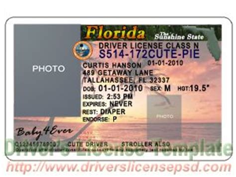 Florida Drivers License Template 8 drivers license template psd images california drivers