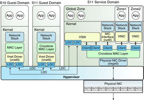 mac os names oracle solaris 11 networking overview oracle vm server