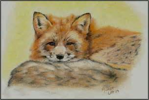 Colored Pencil Animal Drawings