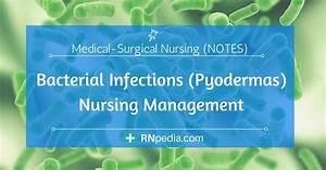 Bacterial Infections  Pyodermas  Nursing Management