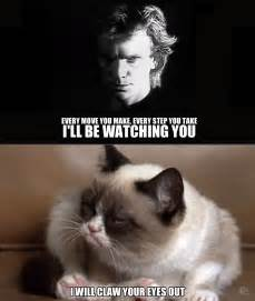 cat songs i ll be you grumpy cat your meme