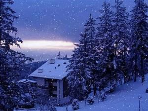 Beautiful Snowfall | Real Snowfall HD Desktop wallpapers ...