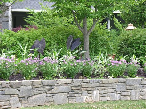picture of landscape garden more than 50 beautiful house garden and landscaping ideas