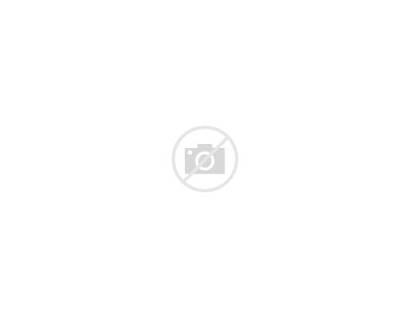 Bedroom Interior Childs Vector Boy Clipart Sleeping