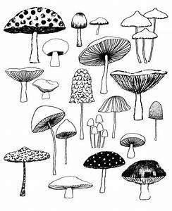 Mushrooms, limited edition giclee print | Stuffed ...