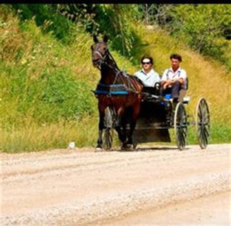 Mennonite Sheds Aylmer Ontario by 1000 Images About Amish Ontario Canada On