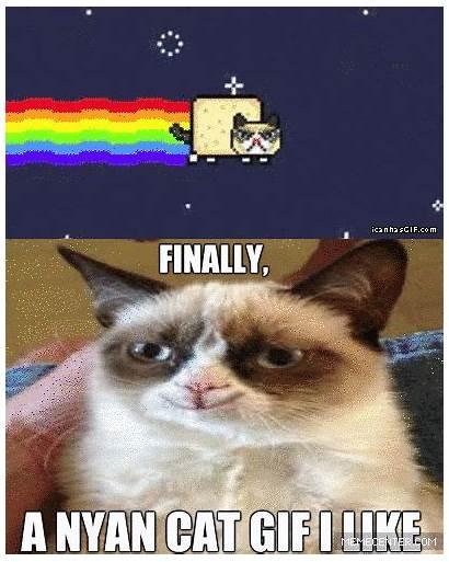 Cat Nyan Meme