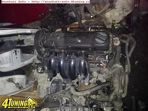 Golf 4 1 6 Motor : motor vw golf 4 1 6 sr 8v 253570 ~ Blog.minnesotawildstore.com Haus und Dekorationen
