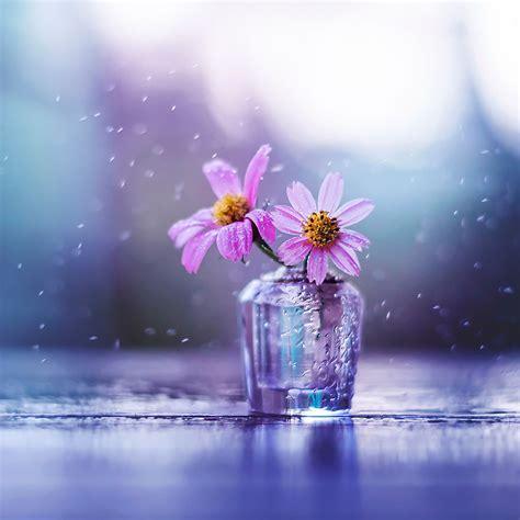 menggunakan bunga  menciptakan gambar