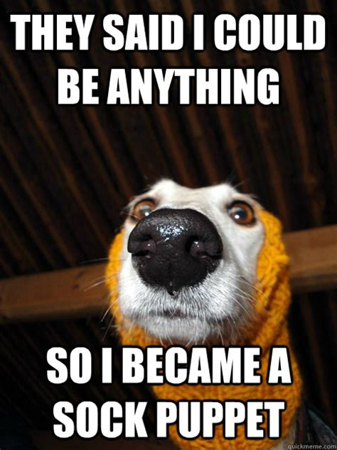 They Said I Could Be Anything Meme - 20 most funny puppet meme pictures of all the time
