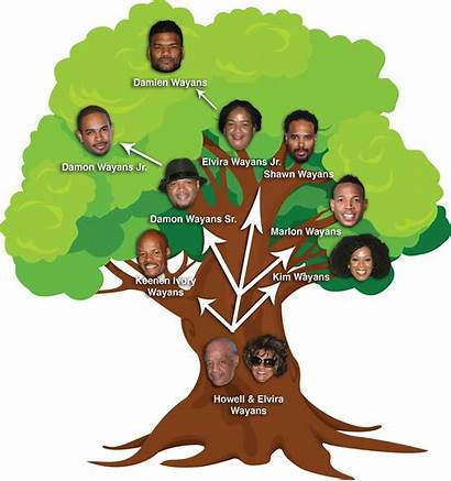 Wayans Tree There Brothers Many Marlon Siblings