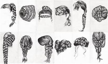 Drawing Braid Study Braids Hair Draw Drawings
