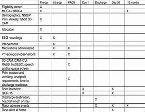 Spirit Diagram Demonstrating Planned Data Collection