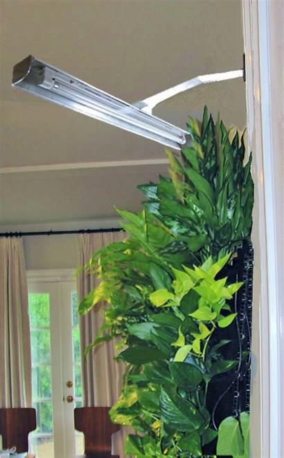 Grow Vertical Garden Mounted Walls Lamp Plants