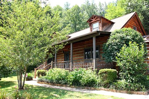 pet cabin pet friendly log cabin in the smoky mountains