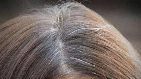 today viewers reveal     gray hair todaycom