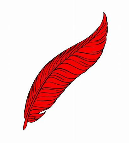 Feather Clipart Feathers Line Quill Domain Clipground