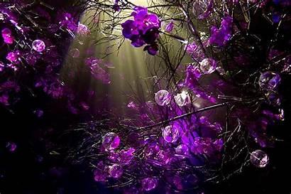 Purple Desktop
