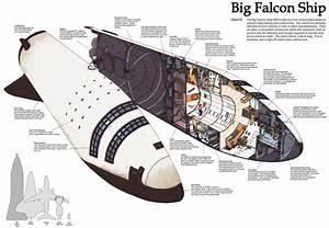 Spacex U0026 39 S Mars Ship  Big Falcon Rocket  Imagined In Cutaway