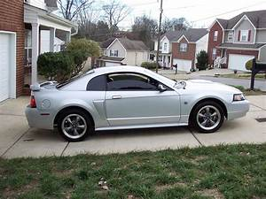 2004 Ford Mustang GT related infomation,specifications - WeiLi Automotive Network