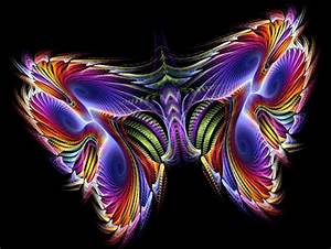 neon butterfly Butterflies & Animals Background