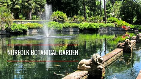 botanical gardens norfolk va days at norfolk botanical gardens virginia bodie