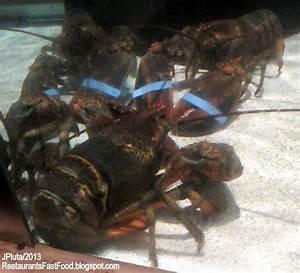 TALLAHASSEE Florida Leon Co. State University Restaurant ...