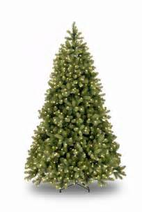 8ft pre lit bayberry spruce feel real artificial christmas tree hayes garden world