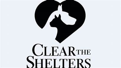 Clear Shelters Shelter Animal 23rd Adopt Nation