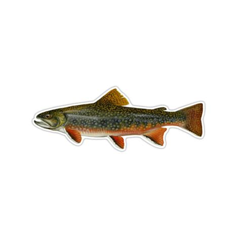 brook trout decal sticker country decal