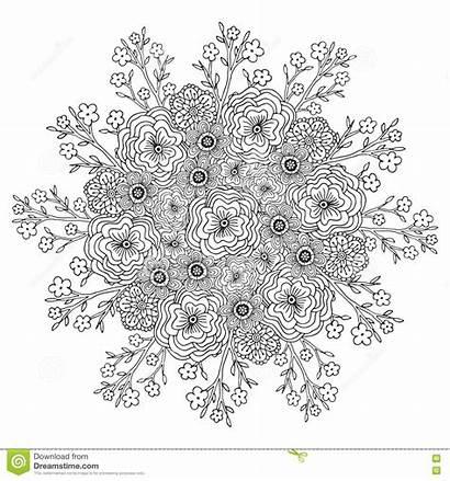 Coloring Mandala Adult Floral Pattern Flowers Vector