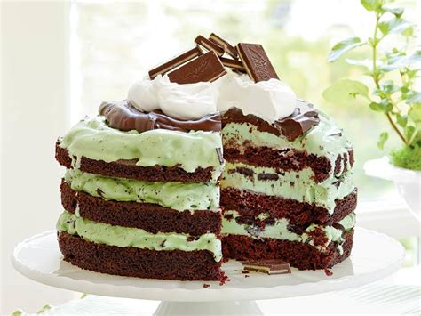 mint chocolate chip ice cream cake recipe myrecipes