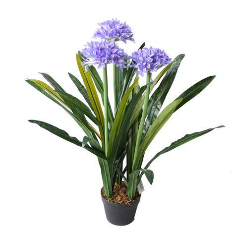 agapanthus plant cm artificial plants