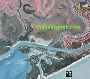 Sargent Texas Bait Camps Live Shrimp Table Shrimp